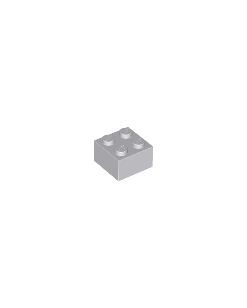 LEGO ® 2X2 gris bl. clair