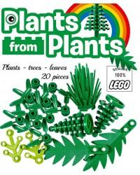 Satz von 20 Blättern Stängel Palmblätter Tannenstrauch