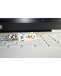 Sleutelhangers bricks 2x4  bedrukt met logo